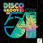 Disco Grooves of Studio 54